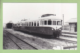 CAMARET : Autorail Decauville X 231 Remorque Billard. Photo Originale Collection Pérève . TBE. 2 Scans. Format 8.8 X 14 - Trains
