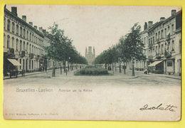 * Laken - Laeken (Brussel - Bruxelles) * (Wilhelm Hoffmann, Dresde, Nr B 3080) Avenue De La Reine, église, Couleur, TOP - Laeken