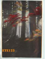 Post Card  - JAPON - Japan - Sous Bois En Couleur - Japon
