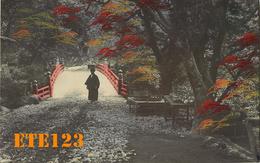 Post Card  - JAPON - Japan - Photo D'un Pont Dans Un Sous Bois Colorisée - Japon