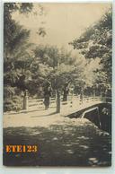 Post Card  - JAPON - Japan - Photo D'un Pont Où Des Femmes Portent Des Buches De Bois Sur La Tête - Japon