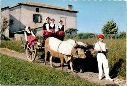 Attelage - Pays Basque - Biarritz - Départ Pour La Fête - Attelages
