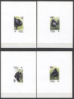Congo  Animals Tiere Monkeys WWF 2002 4v CARDBOARD DELUXE  MNH - W.W.F.