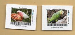 Biberpost -  Papageien Parrot Perroquet - Rosapapagei (Eolophus) Und Gelbkopfamazone (Amazona) - Papageien
