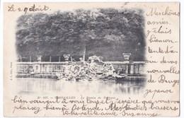 Versailles Le Bassin De Neptune Anno 1903 - St. Germain En Laye (Château)