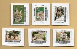 Privatpost Biberpost - Lot 6 W Katzen Chat Cat Gato ( Luchs, Jaguar, Tiger) - Raubkatzen
