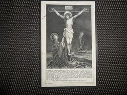 Doodsprentje ( E 573 ) De Vis / De Nayer  -  Hekelgem  -  1920 - Décès