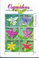 EL SALVADOR,EL SALVADOR 1999, ORCHIDS, FLOWERS, SCOTT 1517 MINIATURE SHEET MINT NH - El Salvador