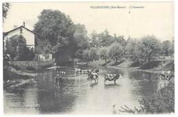 Cpa Villegusien - L'Abreuvoir  ( Vaches ) - France