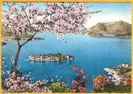 CP Ediz.:A.Preda-Lago Maggiore -Isola Bella Vista Da STRESA - Novara