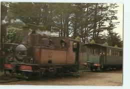 Chemins De Fer Régionaux Et Urbains N° 33 - Chemins De Fer Des Côtes Du Nord - Gare St QUAY -1956 - TTBE - CPM - 2 Scans - Trenes