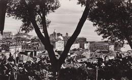 20 / AJACCIO / EDIT TOMASI 6771 / CIRC 1947 - Ajaccio