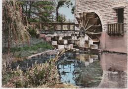 Br - Cpsm Grand Format CHABLIS (Yonne) - La Roue Du Moulin - Chablis