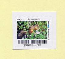 Privatpost - Biberpost - Eichhörnchen (Sciurus Vulgaris) - Briefmarken