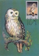 BIRDS, URAL OWL, CM, MAXICARD, CARTES MAXIMUM, OBLIT FDC, 2003, ROMANIA - Eulenvögel