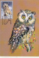 BIRDS, BOREAL OWL, CM, MAXICARD, CARTES MAXIMUM, OBLIT FDC, 2003, ROMANIA - Eulenvögel