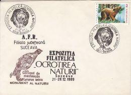 MAMMALS, BROWN BEAR, BLACK GROUSE BIRD, NATURE, SPECIAL COVER, 1989, ROMANIA - Bären