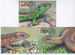 Belarus 2018 Lizards Fauna Worm Snake, Maximum Cards X3 - Belarus