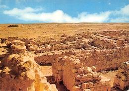 Qumrân Archéologie - Palestine