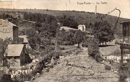 TROIS-PONTS LA SALM - Trois-Ponts