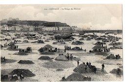 119 - CANCALE - Le Triage Des Huîtres - Cancale