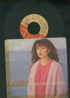 ALICE-IL-VENTO-CALDO-DELL'ESTATE-SERA-DISCO-VINILE-anno-1980 - Dischi In Vinile