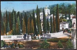 Croatia Rijeka, Fiume 1913 / Cimitero S. Michele, Cipressi / Groblje Sv. Mihovila, Cempresi / Mehner & Maas - Kroatien