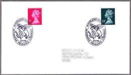 YELLOW NECKED MOUSE - RATON LEONADO - Apodemus Flavicollis. Penzance 2004 - Roedores