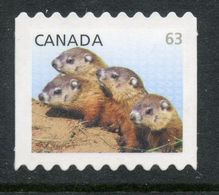 CANADA 2013, # 2692ii,  BABY WILDLIFE   WOODSUCKS   DIE CUT FROM QUATERLY PACK - Roulettes