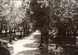 34 - PIGNAN - LE PARC - Autres Communes
