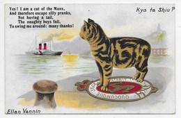 Kys Ta Shiu? - Cat + Verse - Manx Camera Series - Isle Of Man