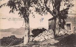 CPA PIANA ( Corse ) Sur Le Chemin Des Calanches - France
