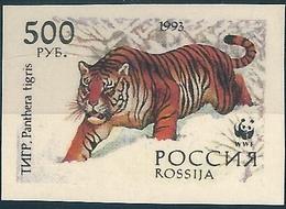 B3758 Russia Rossija Fauna Animal Tiger Organization (500 Rubel) Colour Proof - Varietà E Curiosità