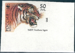 B3762 Russia Rossija Fauna Animal Tiger (50 Rubel) Organization Colour Proof - 1992-.... Federación