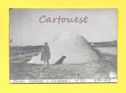 Photographie Ancienne 1928 - 13.70 Cm 9.50 Cm, MARAIS SALANT MESQUER 44420 8 Novembre 1928 - Lieux