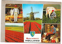 HOLLANDE - SOUVENIR HOLLAND - MULTI-VUES  - WWW - - Pays-Bas