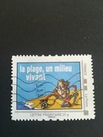 La Plage Un Milieu Vivant - France
