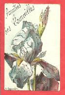 "CPA 1907  ""Amitiès Des Tourailles"" (61)  Fleur IRIS ILL.C.Klein Gros Plan - Otros Municipios"