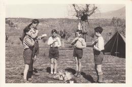 AGESCI Associazione Guide E Scouts Cattolici Italiani - 50° Anniversario Guidonia I 1994 - Scoutismo