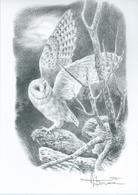 A BUZIN  LA CHOUETTE   EFFRAIE  SEPIA - 1985-.. Birds (Buzin)