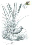 A BUZIN      SEPIARALE D'EAU + TIM CACHET TOURINNES-SAINT-LAMBERT  28/01/2017 - 1985-.. Birds (Buzin)