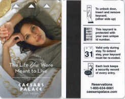 The Life You Were Meant To Live - Caesars Palace-1321 Key Card, Room Key, Clef De Hotel, Sleutelkaart - Hotel Keycards