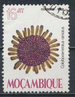 °°° MOZAMBIQUE MOZAMBICO - Y&T N°902 - 1982 °°° - Mozambico