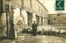 Cpa Carte Photo CROISSY SUR CELLE 60 Berger Et Moutons, Ferme à La MALMAISON - Autres Communes