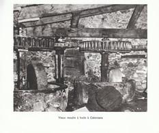 1970 - Héliogravure - Calenzana (Corse) - Un Vieux Moulin à Huile - FRANCO DE PORT - Vieux Papiers