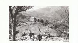 1970 - Héliogravure - Morosaglia (Corse) - Vue Génrale - FRANCO DE PORT - Vieux Papiers