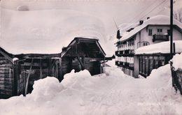 Gryon VD Sous La Neige (5080) - VD Vaud