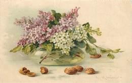 KLEIN CATHARINA (illustrateur) -  Fleurs Lilas. - Klein, Catharina