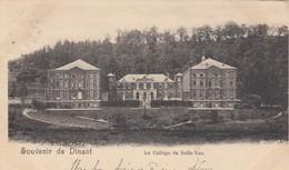 DINANT / LE COLLEGE DE BELLE VUE  1909 - Dinant