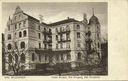 BAD WILDUNGEN, Hotel Bristol, Am Eingang Des Kurparks (1910s) AK - Bad Wildungen